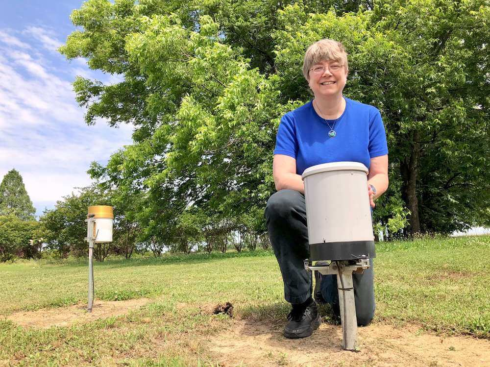 Annuals grown in biodegradable planting containers