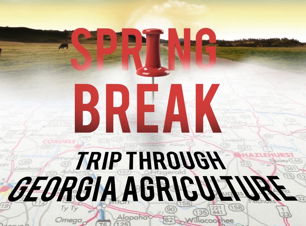 uga spring break 2020