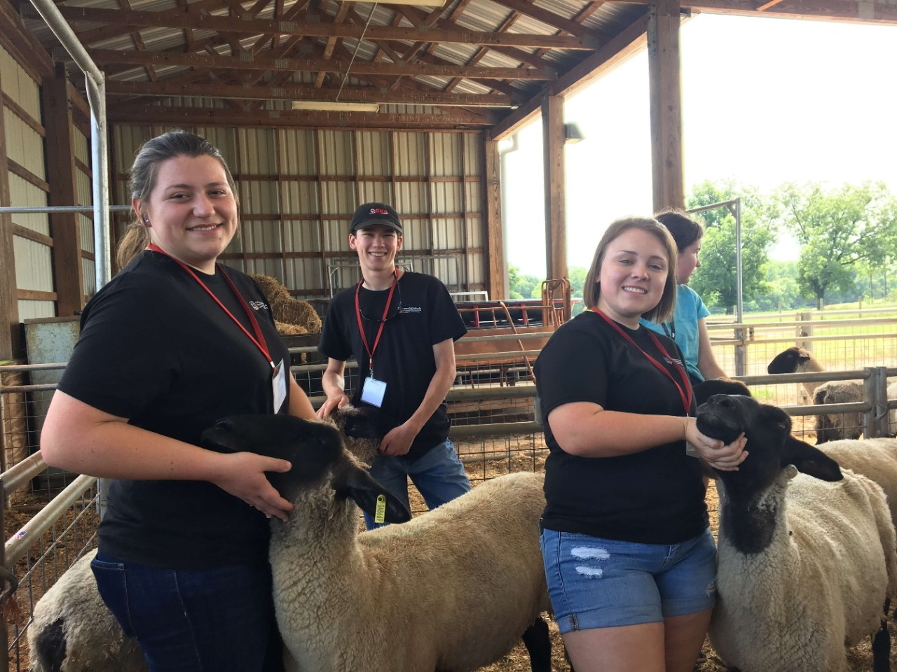 Animal Science in Action participants with sheep