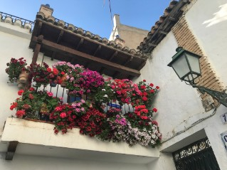 flowers-balcony-spain